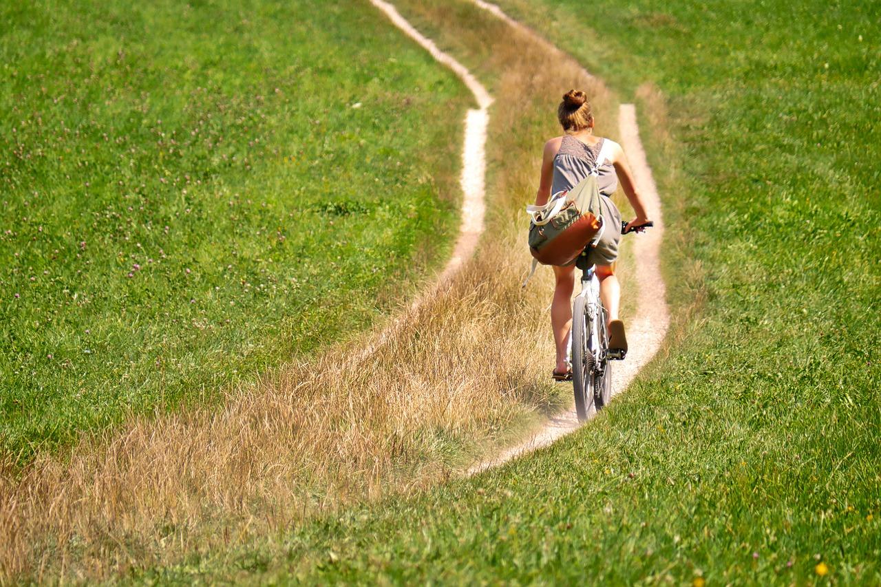 Elektrische fiets van Stella fietsen